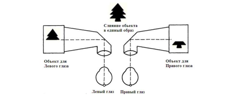 схема синомпоформ